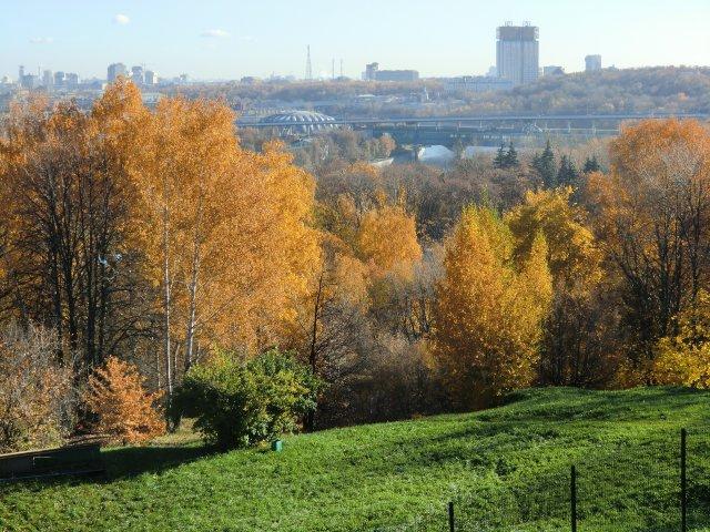 Вид с обзорной площадки Воробьёвых гор.