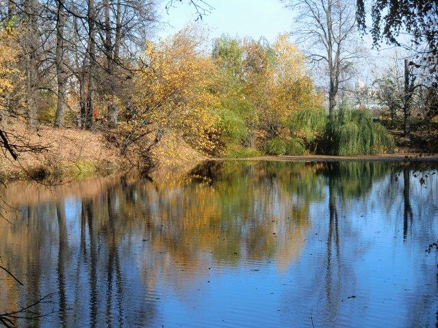 Пруды над Андреевской набережной Москвы-реки.