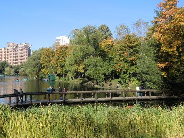 25 сентября 2010 в Воронцовском парке Москвы.