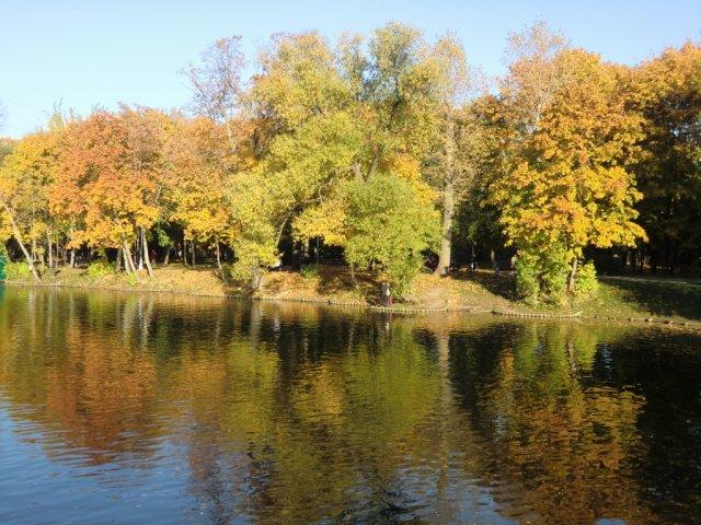 Осень в Воронцовском парке.