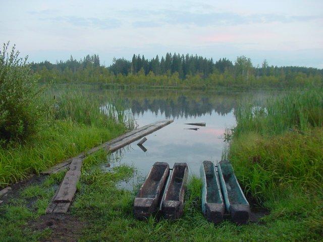 Ройки на оз.Худоеже - лодки в Новгородской губернии: выдолбленные сдвоенные брёвна.
