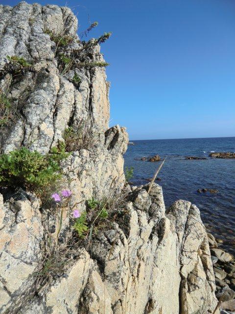 Скалы на берегу океана.