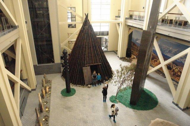 музей А.В.Анохина