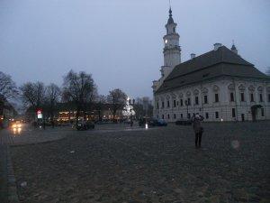 Одна из площадей Вильнюса. На заднем плане - елка, сделанная местной мастерицей