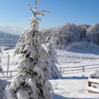 Узана, Болгария