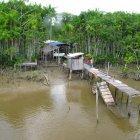 Домик на берегу реки Амазонка