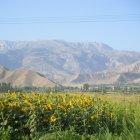Окрестности Душанбе, Таджикистан