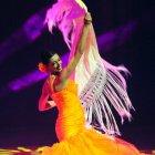 Фламенко, Испания