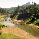 Местность недалеко от Тривандрума, Керала, Индия
