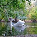 Парк в Мишкольце, Венгрия