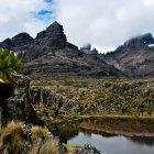 Национальный Парк Гора Кения