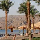 Отель Movenpick Resort Taba 5*, Таба, Египет