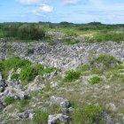 Ландшафт Науру