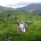 Нувара-Элия, Шри-Ланка