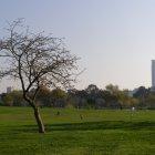 Парк Яркон, Тель-Авив