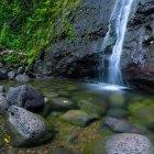 Водопад Маноа, Гонолулу