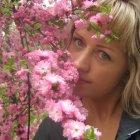 Цветение сакуры в Танганцзы, Китай
