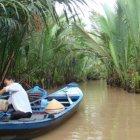 Джунгли в дельте Меконга