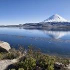 Национальный парк Лаука, Чили