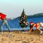 Отдых на новогодних каникулах