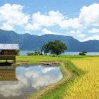 Остров Суматра, Индонезия