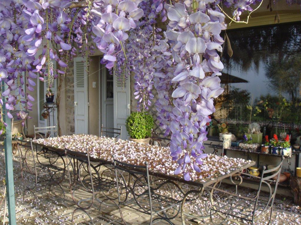 франция фото прованса